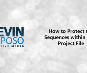 How to Protect the Sequences within Your Project File